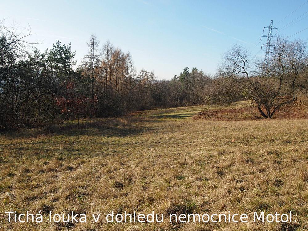 Pěšina k tiché louce v dohledu nemocnice Motol.